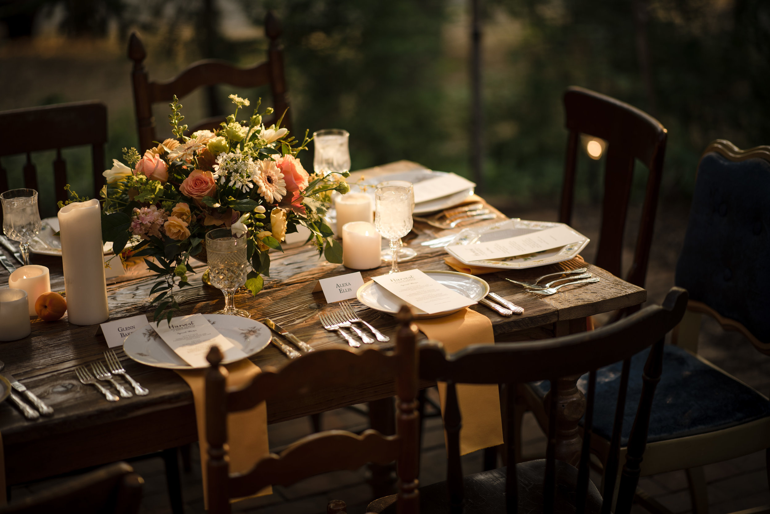 West-Chester-PA-Faunbrook-Harvest-Dinner-Series-Apricot-ChristieGreenPhotography-55.jpg