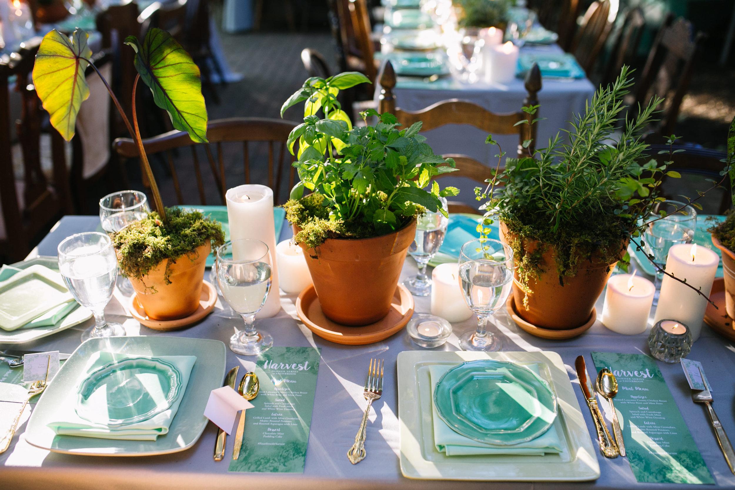 West-Chester-PA-Faunbrook-Harvest-Dinner-Series-Mint-BrittneyRaine-119.JPG
