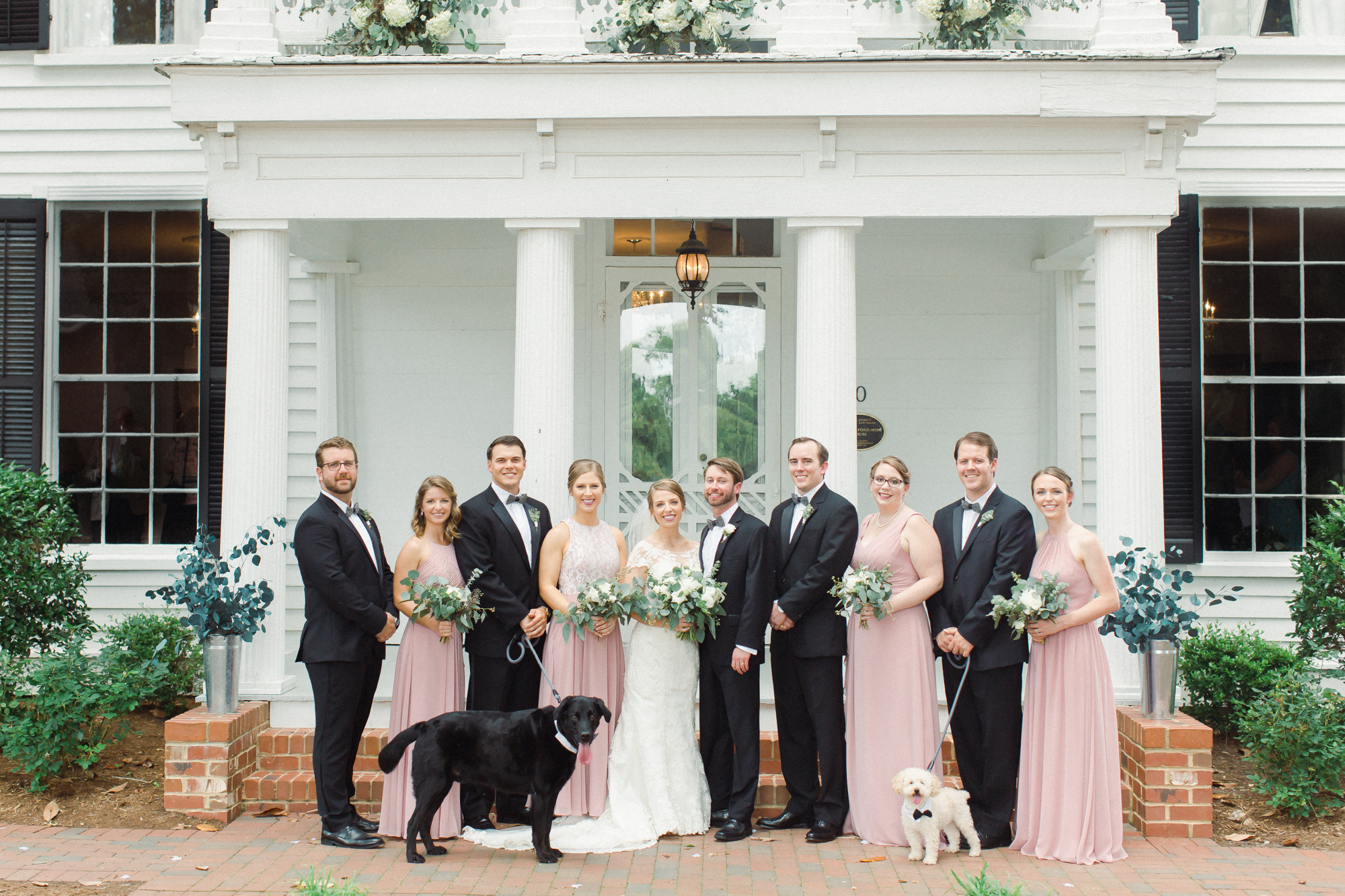 wedding party with dogs