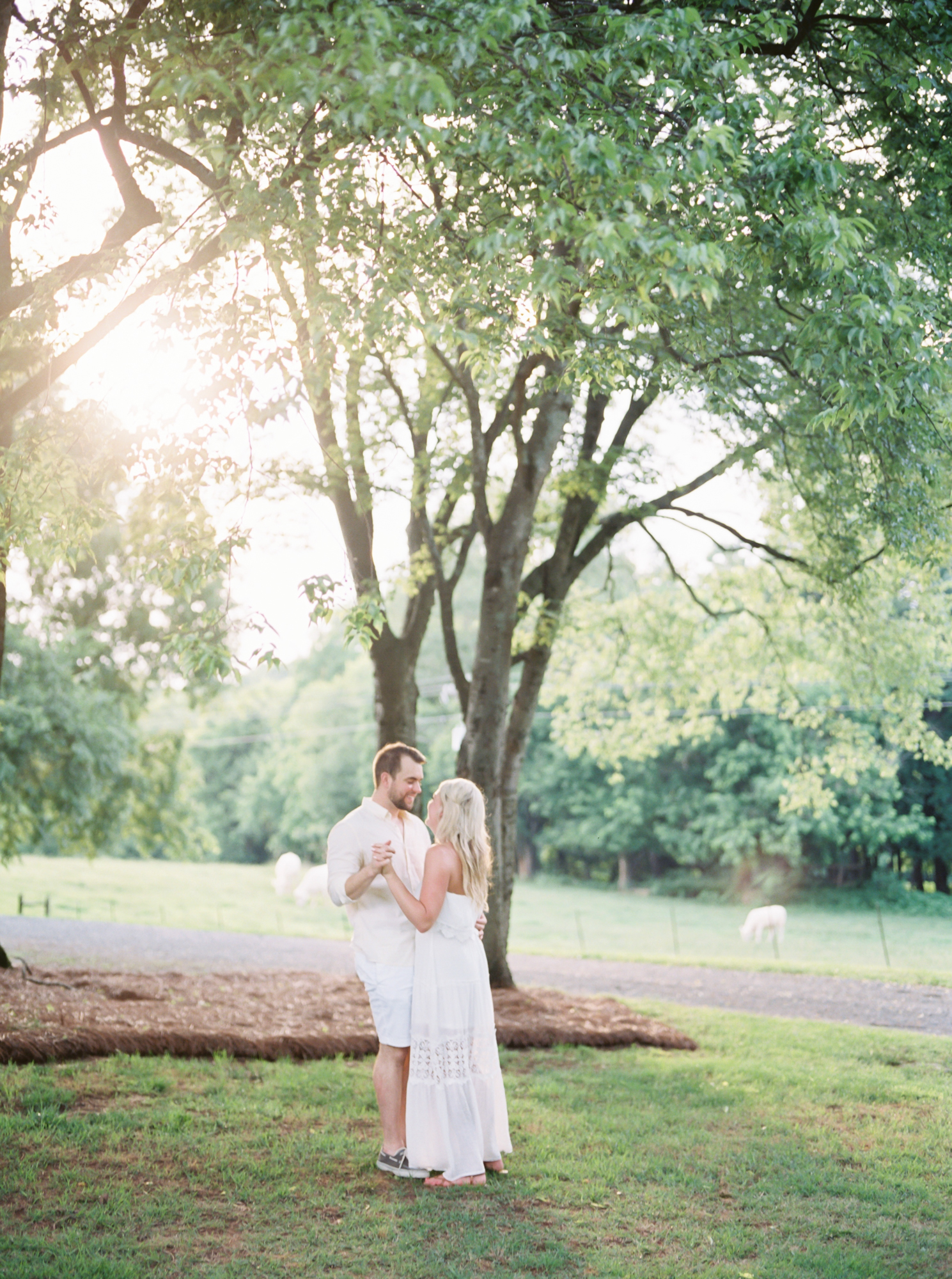 sunset engagement session charlotte nc