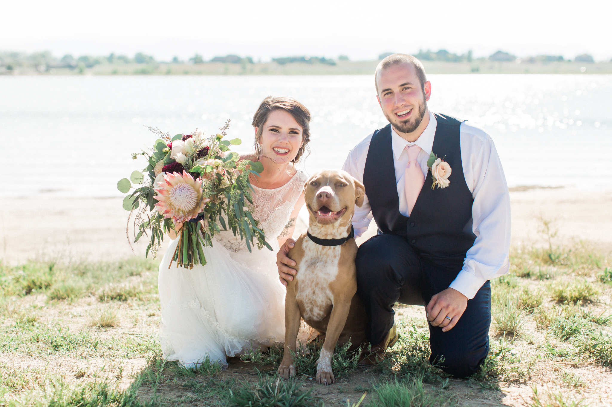 bride and groom with pitbull