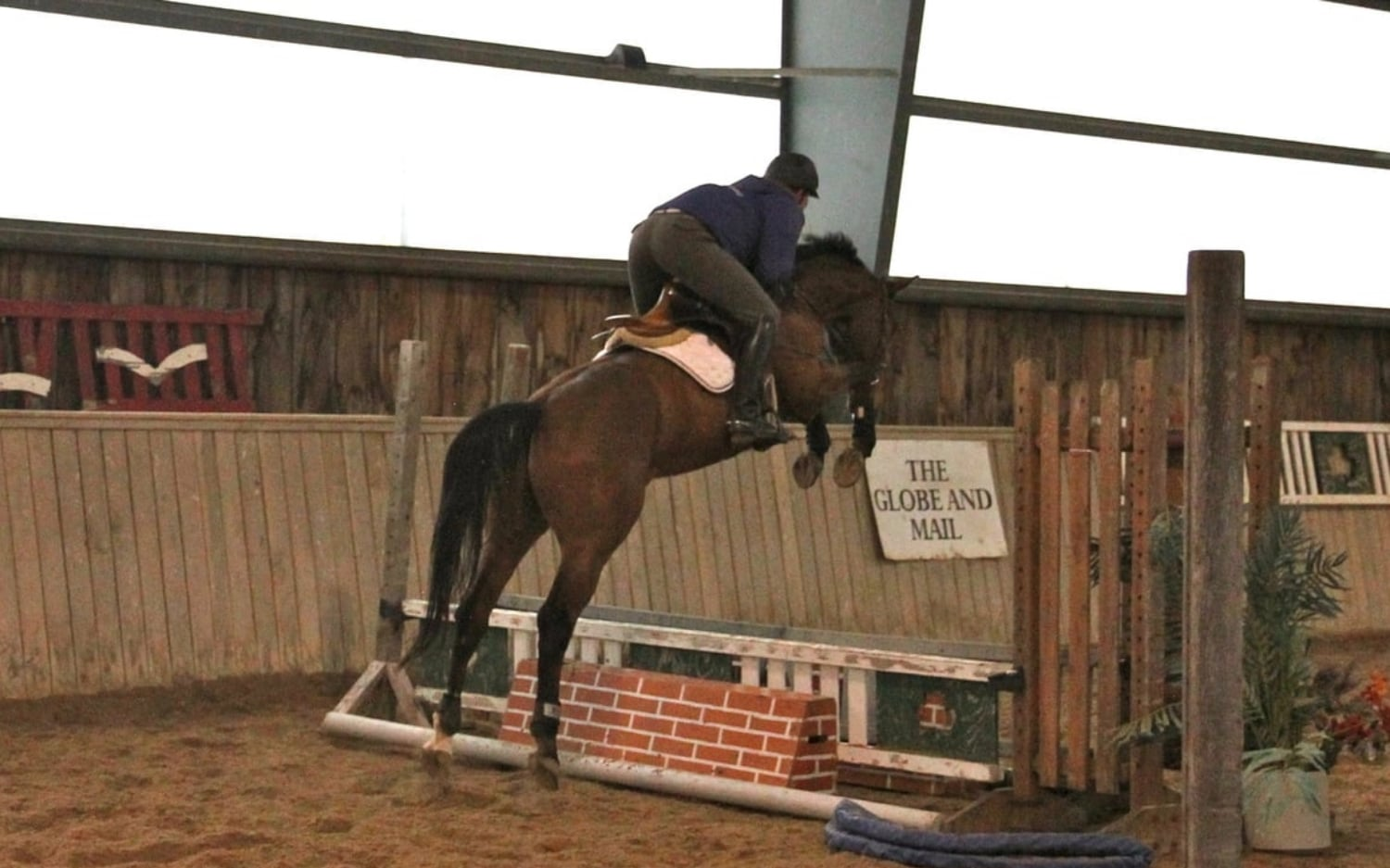 2008 KWPN Gelding - Trained and Sold to the USA by Kevin Holowack
