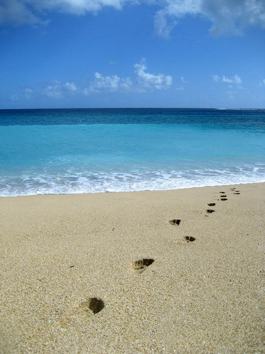 kauai-beach-portrait.jpg