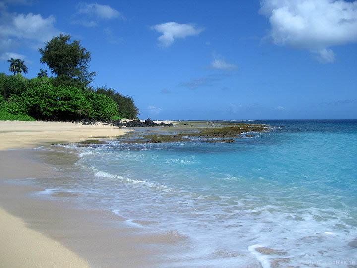 kaui-beach-photo.jpg