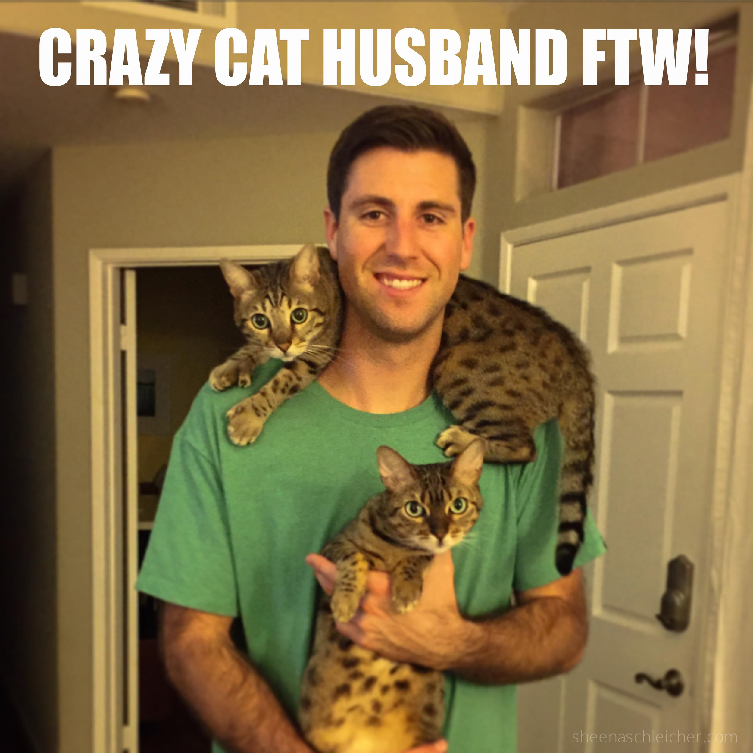 Crazy cat husband #cat #meme