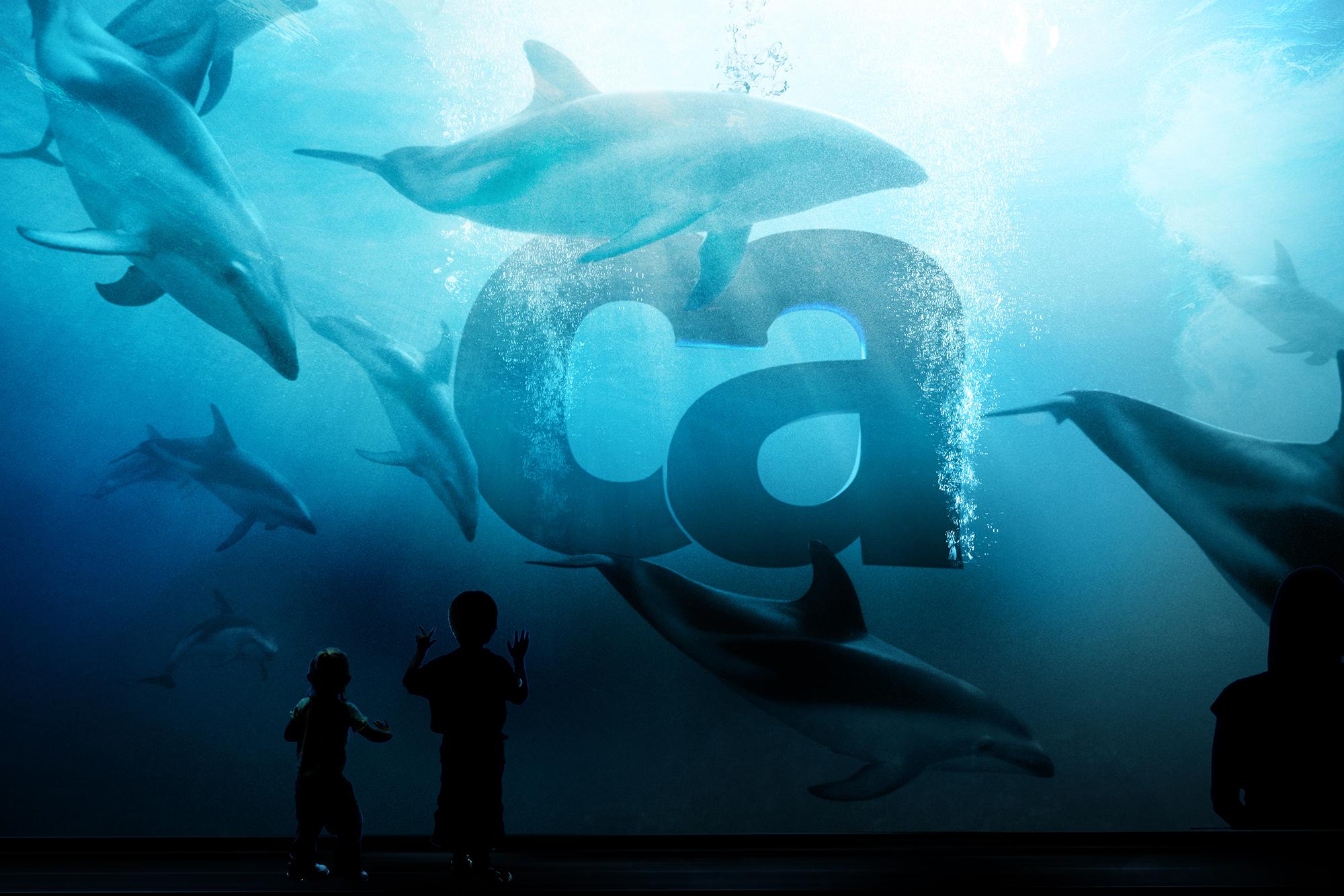 Seaworld.jpg