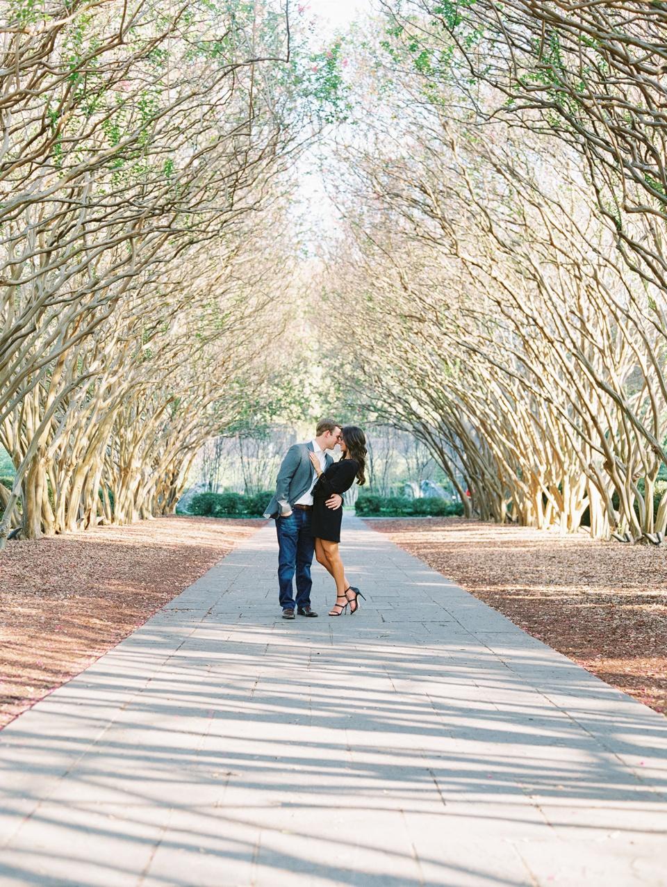 Crepe Myrtle Alley Dallas Arboretum