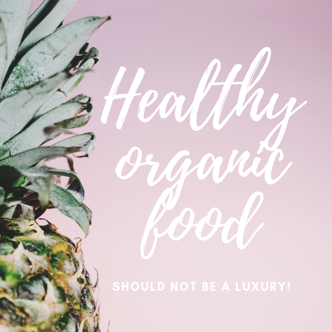 Organic Food (v1).png
