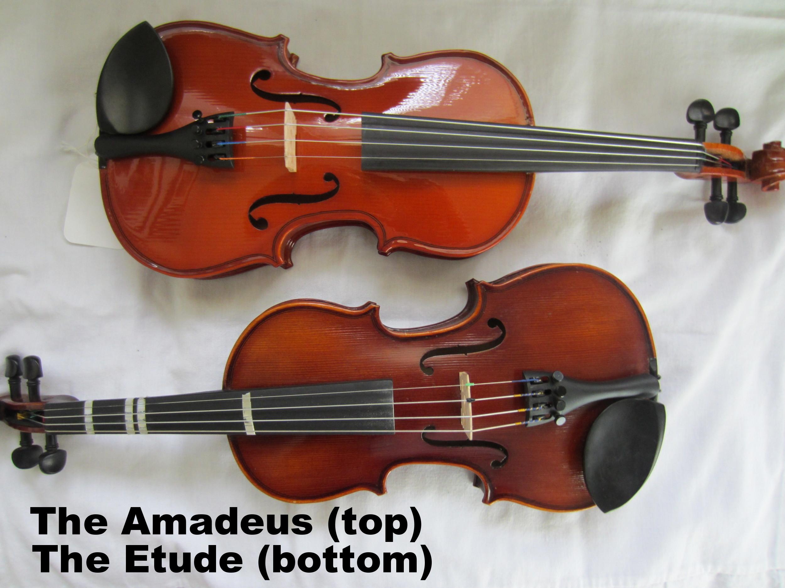 Franz Hoffman Violins