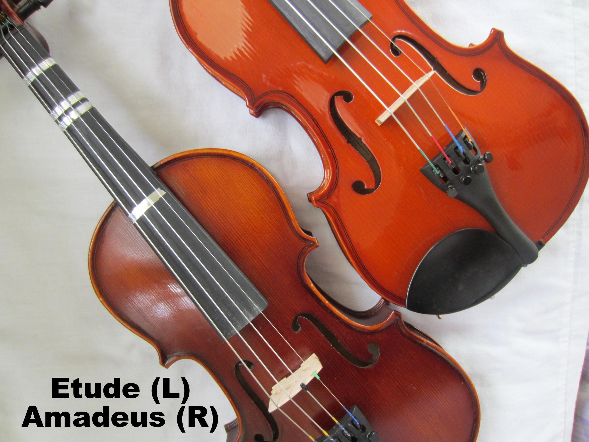 Franz Hoffman Violin Review