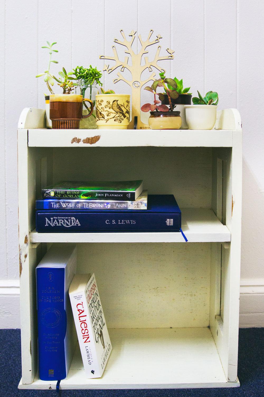 Book shelf with Brookes 5 top fantasy books. bella magazine