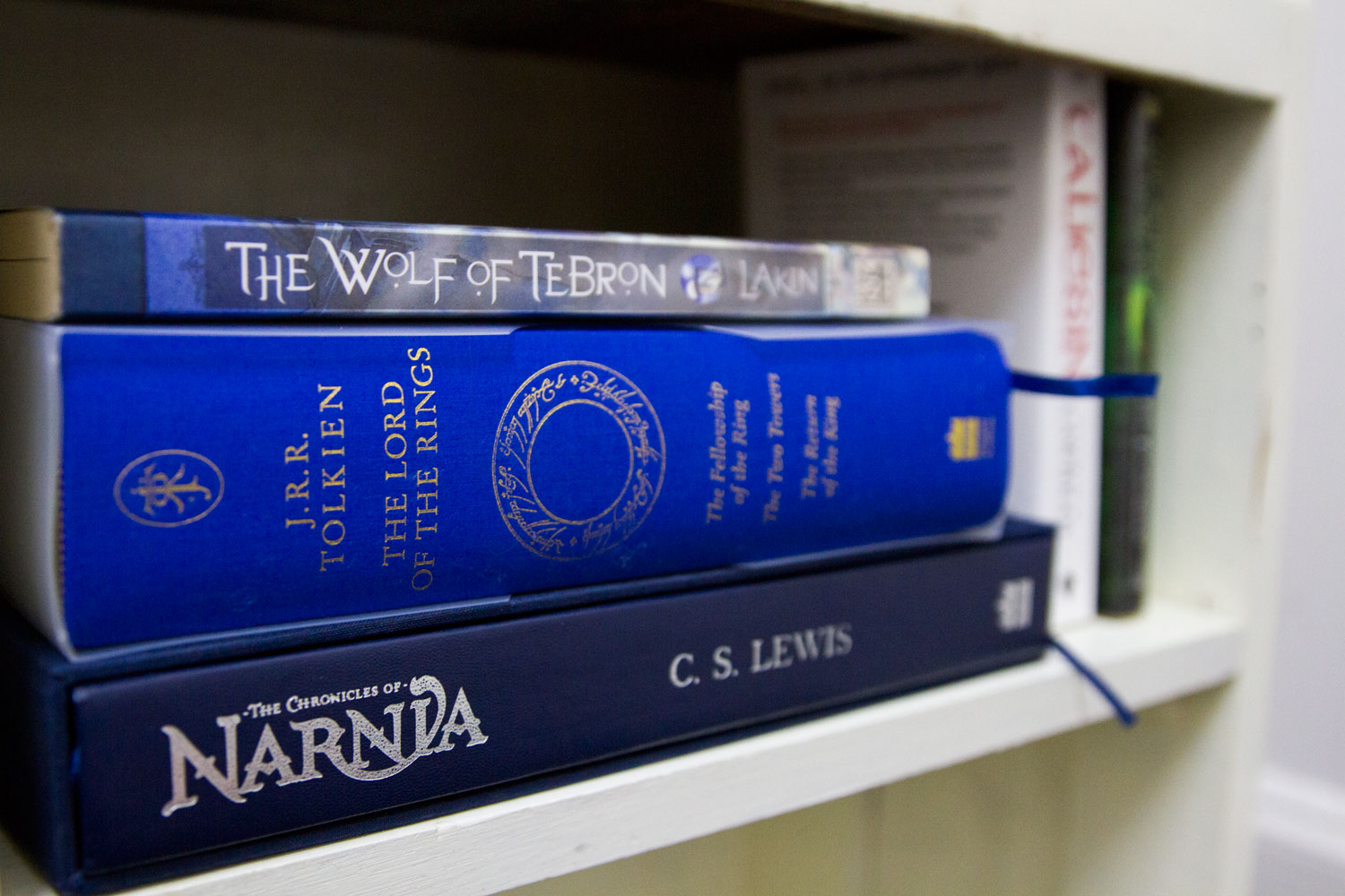The Wolf of Tebron, The Lord of the Rings, Narnia books in vintage bookshelf.