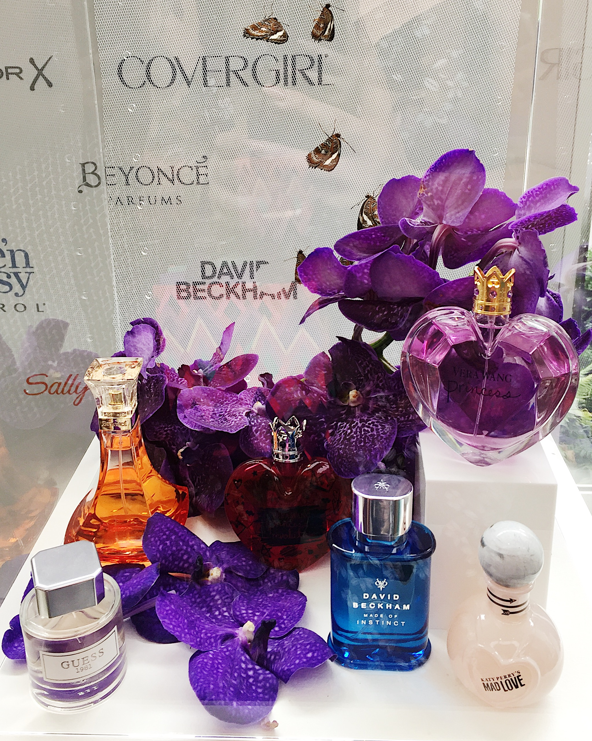 Marisa Robinson Beauty Blogger Coty Consumer Beauty Showcase 2017 Fragrances