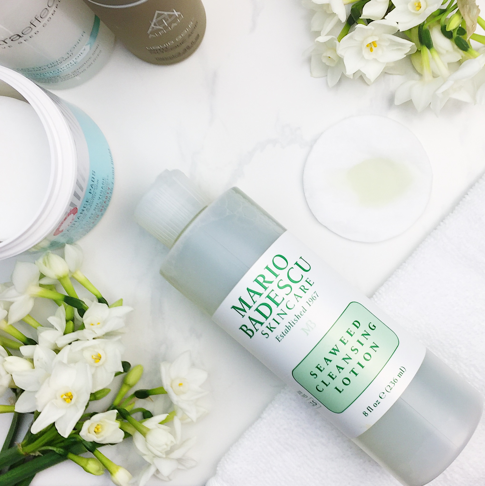 Marisa Robinson Beauty Blogger Ace Your Base Part 2 Toners Mario Baedscu Seaweed Cleansing Lotion