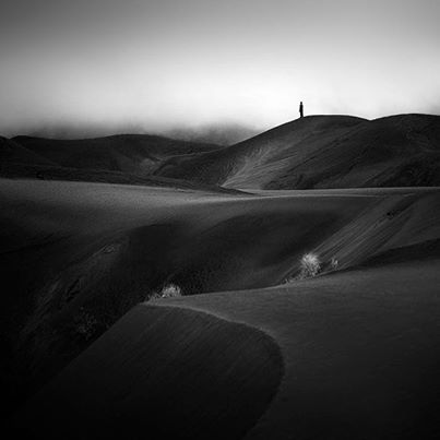 photo23 bw fog hills