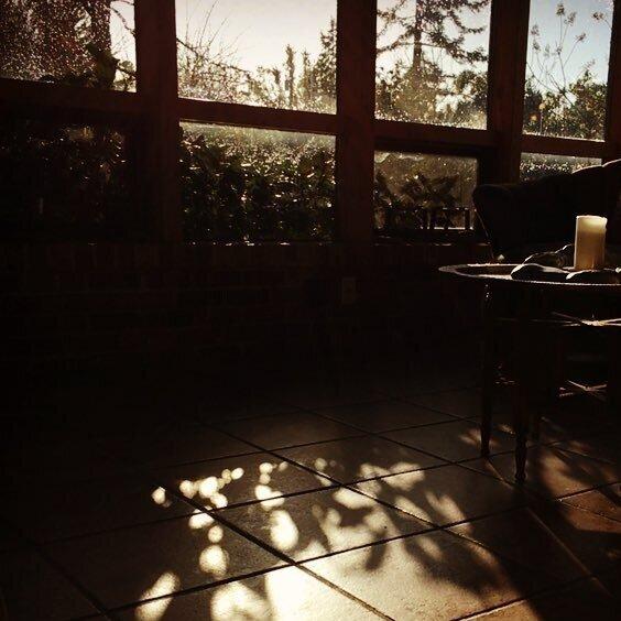solarium+floor+shadows+2016.jpg