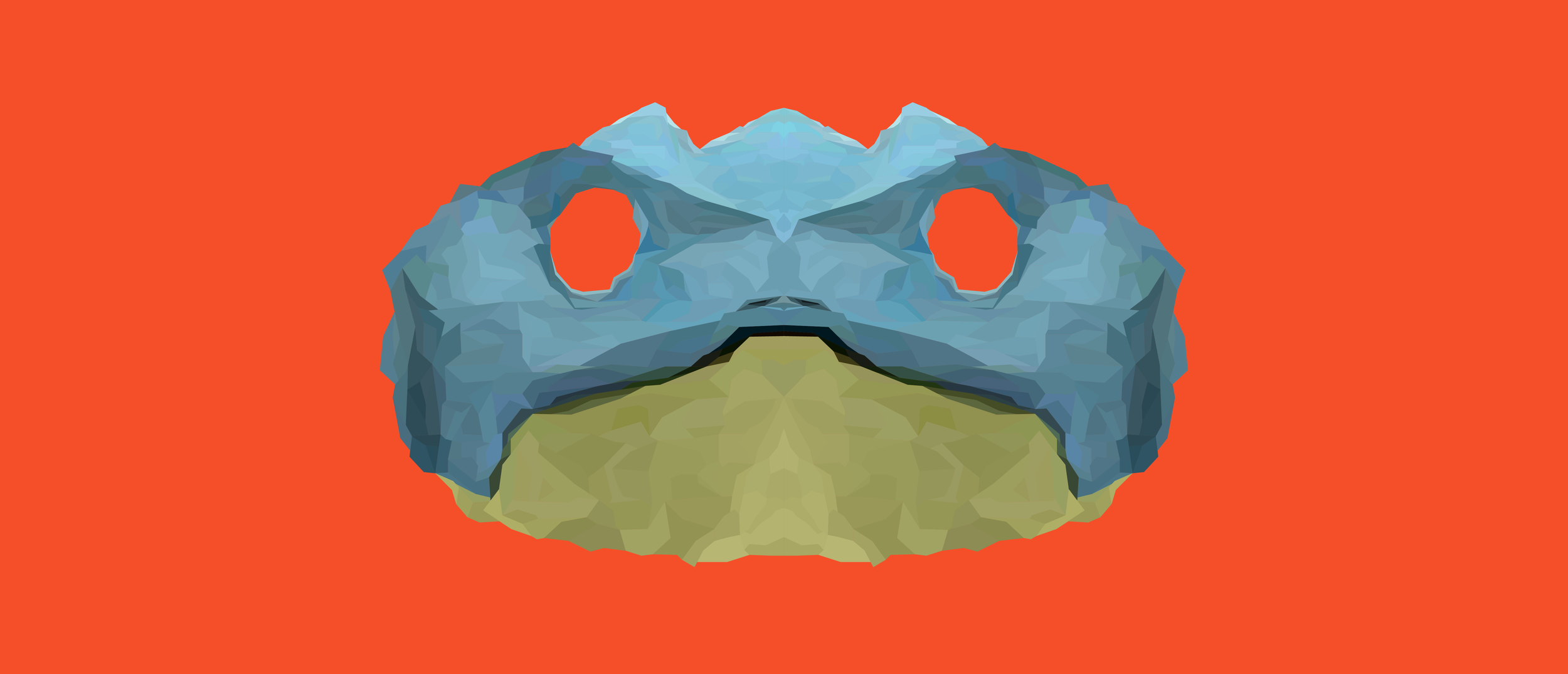 toad-01.png