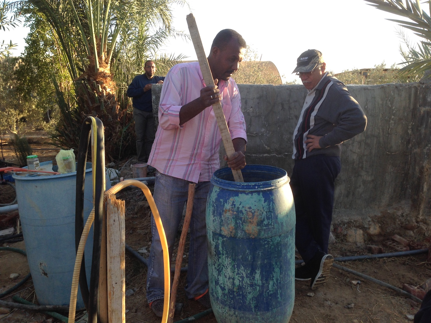 Dr. Soliman overviewing the mixing of sulfer with fertilizer to add to the soil