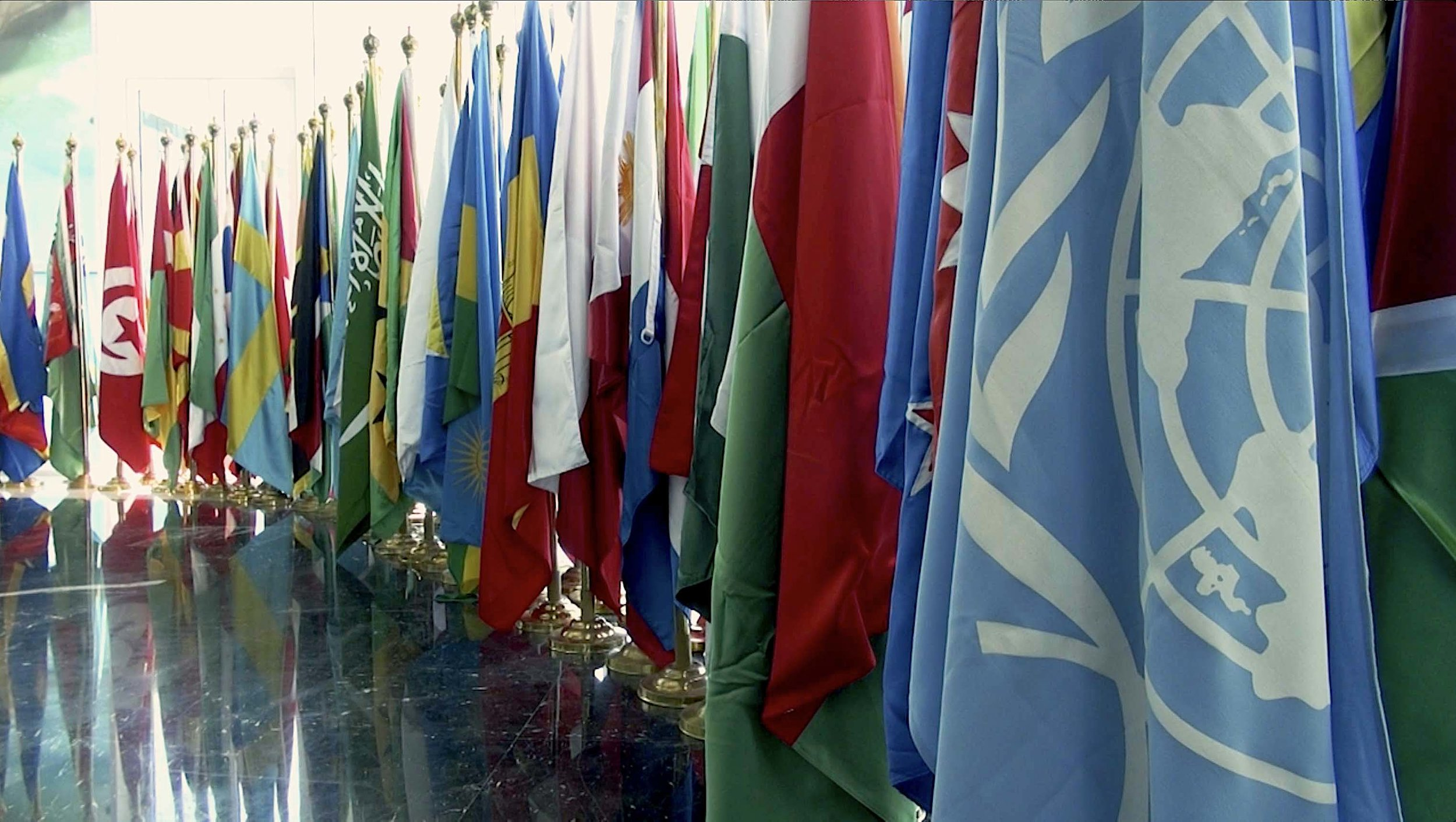 FLAGS at COP14cbd.jpg