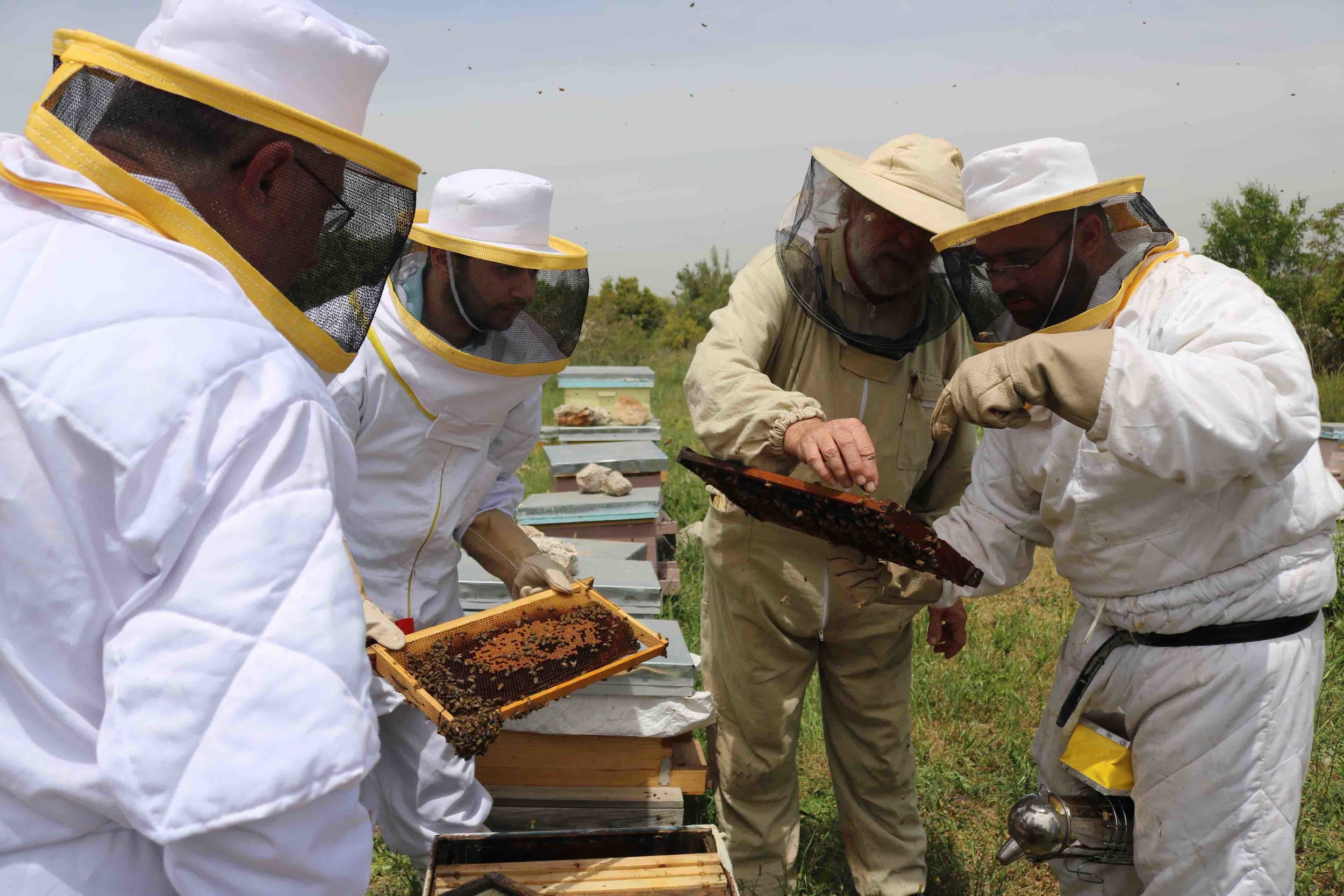 Beekeeping workshop in Saidoun, Jezzine, South Lebanon organized by SOILS Permaculture Association, within the framework of their AFIR Beekeeping and Nature Discovery Center, in collaboration with APIFLORDEV.  Photo: SOILS, 2016.