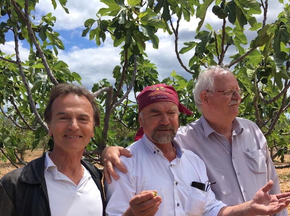 owner of olive and vine.jpg