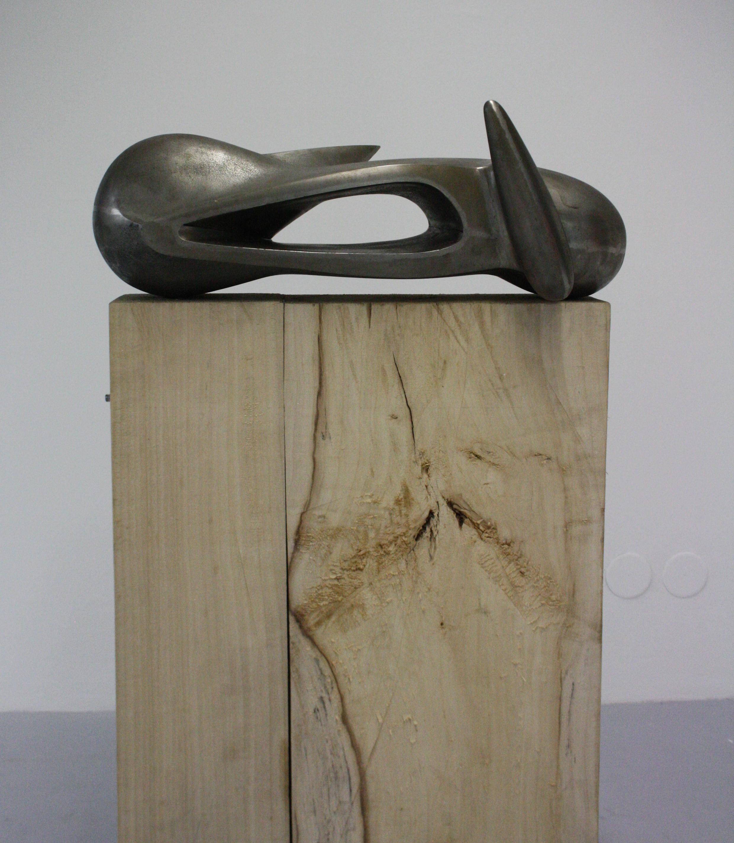 Stefan Milkov, Amorfoid II, 2013, 75 x 22 x 28 cm, kov