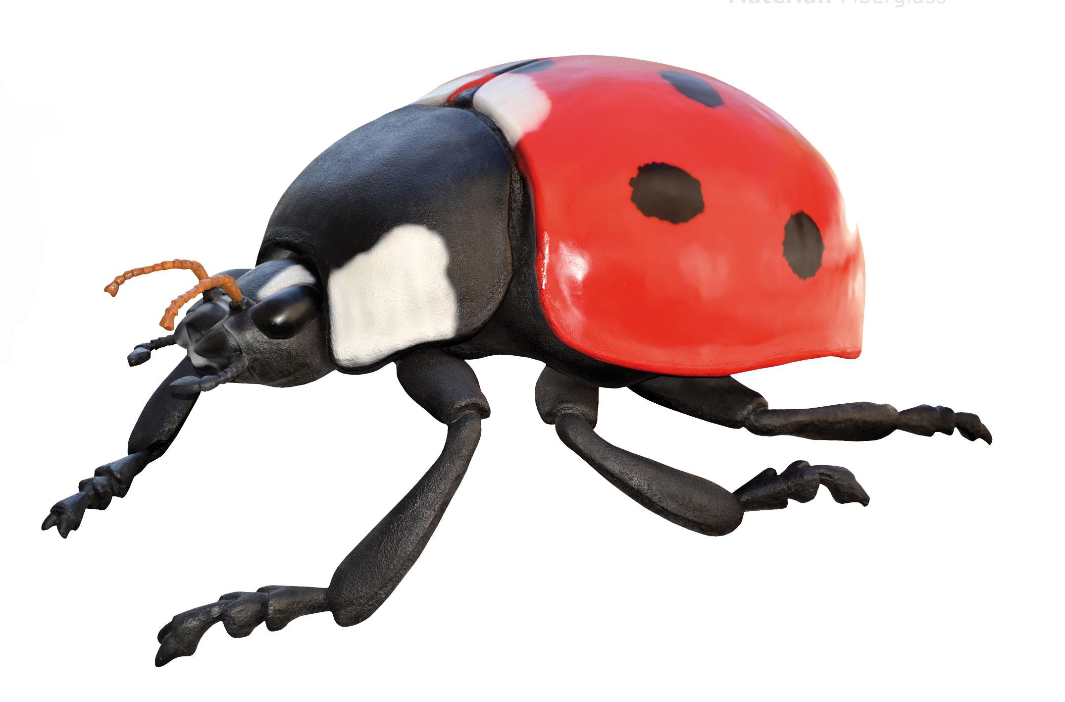Insekt_frit_3.jpg