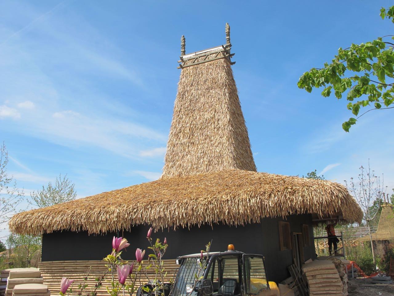 Bali Palm Thatch.