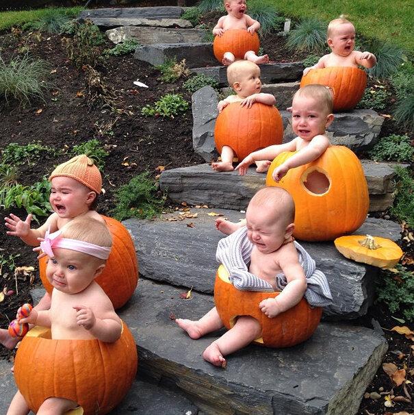 Reality-Babies-in-pumpkins. - Copy.jpg