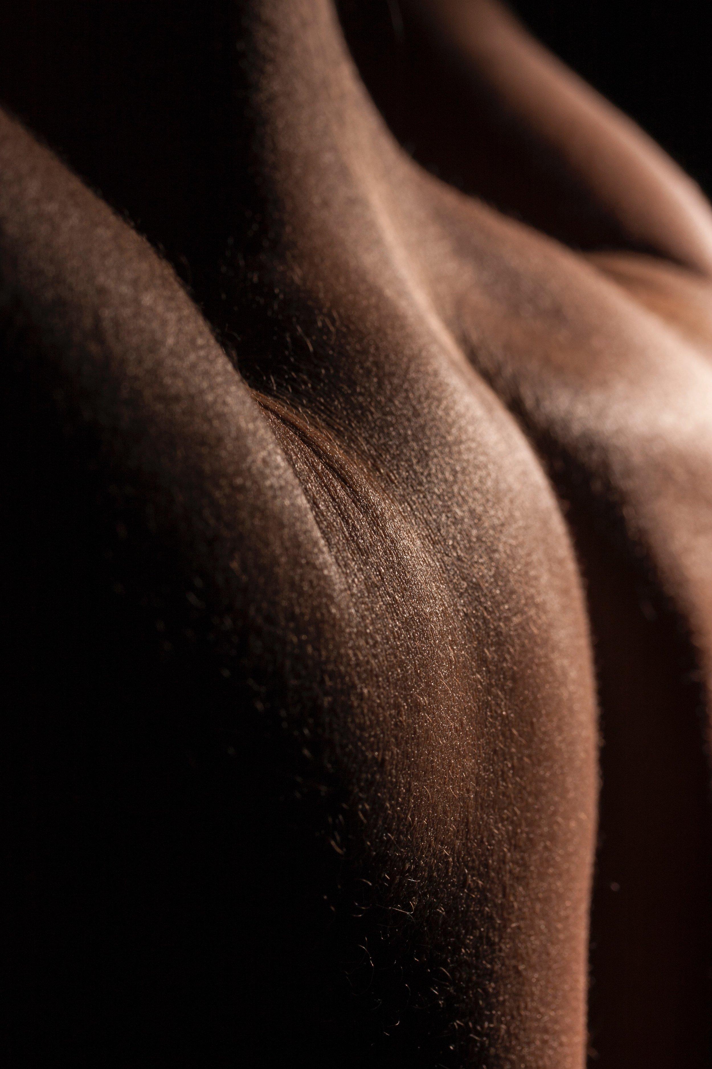 back-blur-body-1437343.jpg