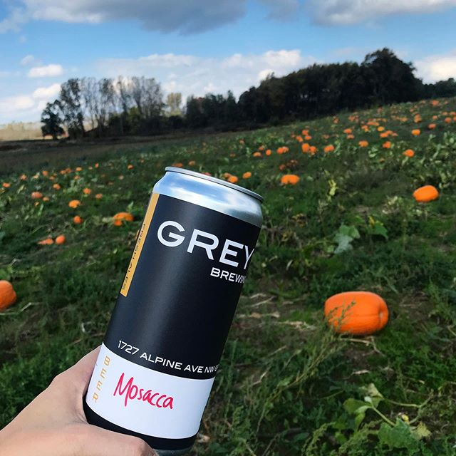 Pumpkins in a field. Not in our beer.  #nationalpumpkinspiceday