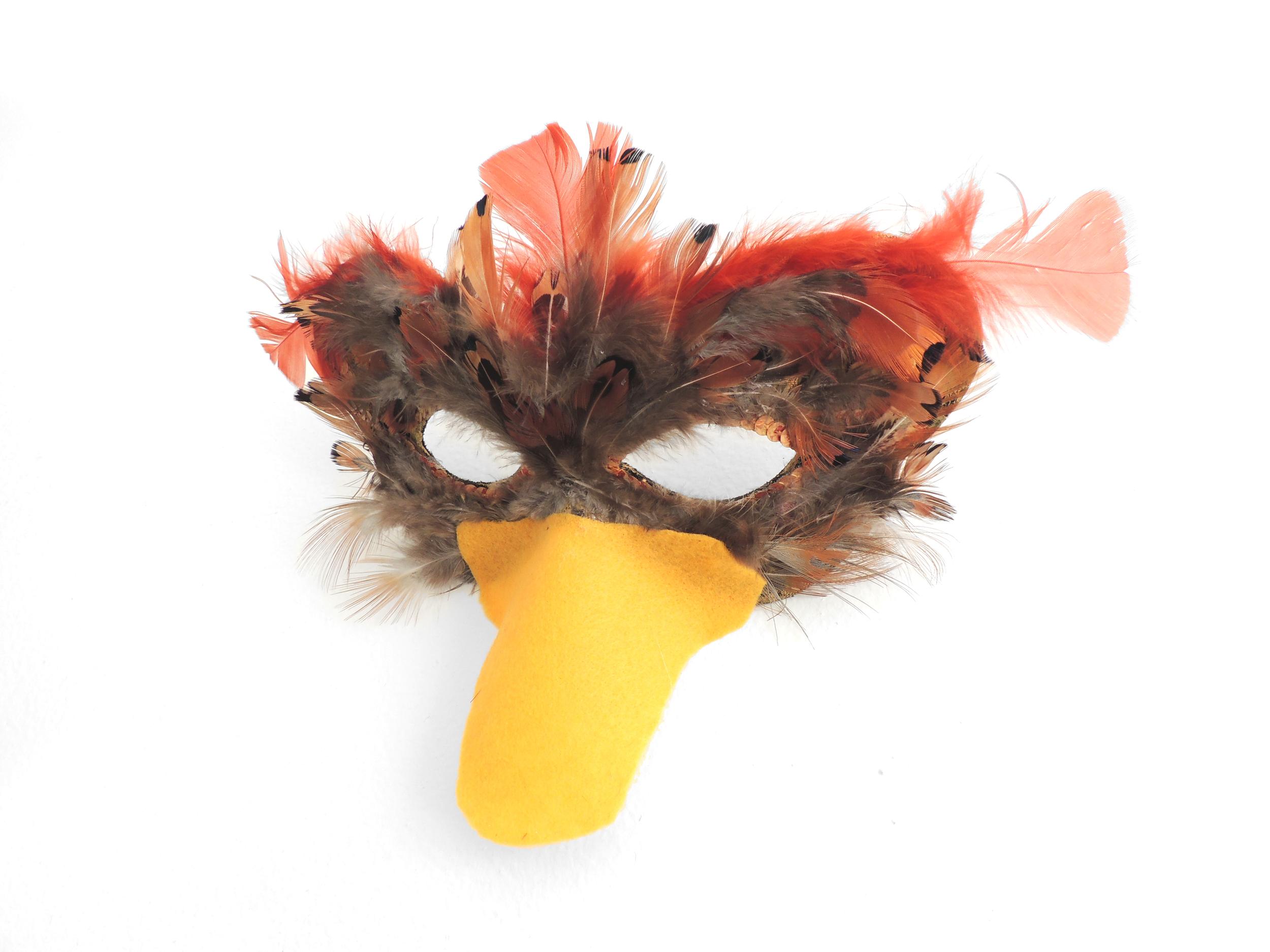 mask-duck2.jpg