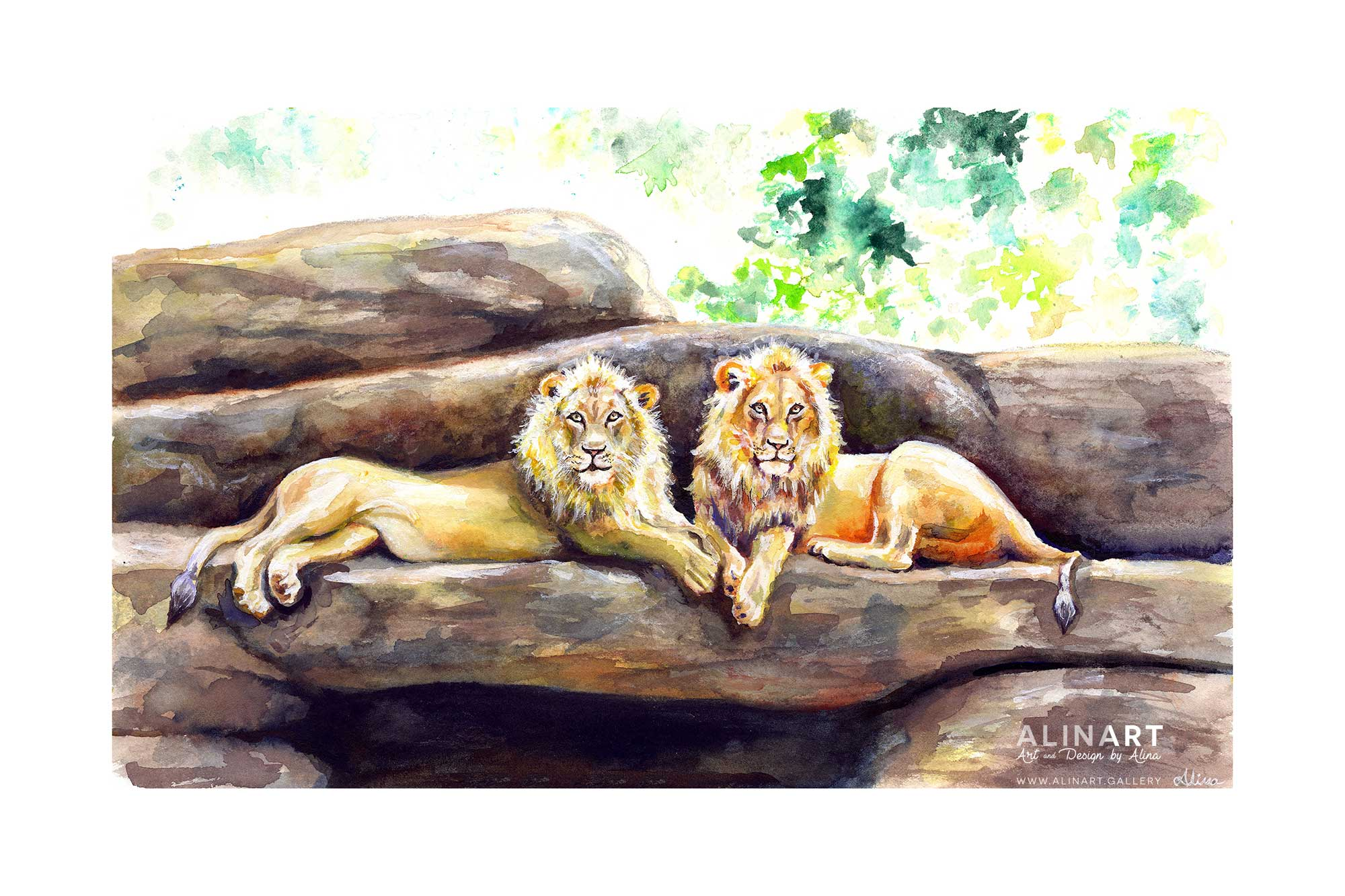 Lion Around , 2016, Watercolor on paper