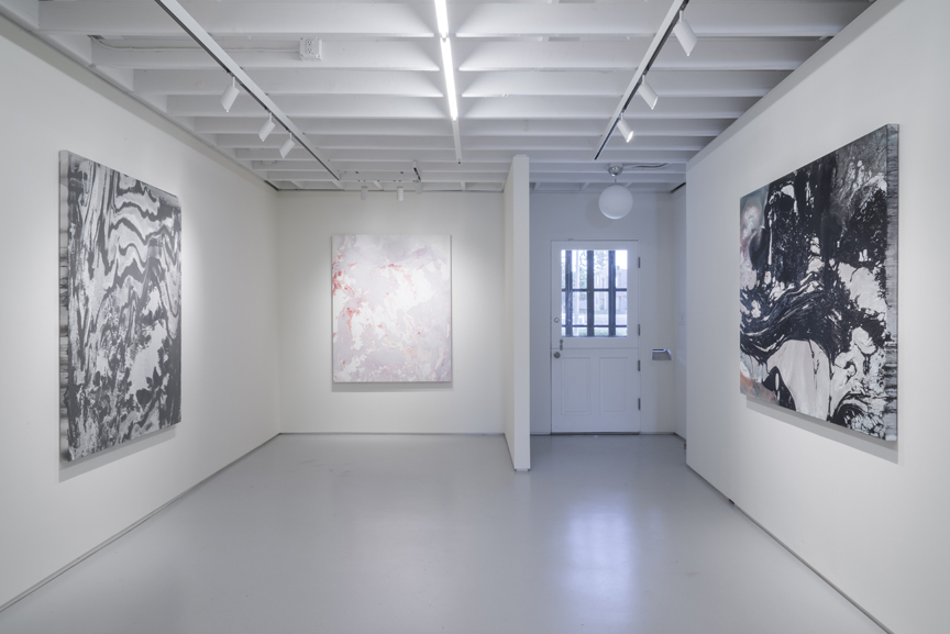 Science Fiction,  Installation views, c.nichols project, Los Angeles, 2014 photos by Joshua White