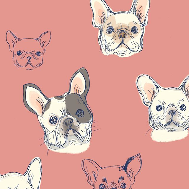Long time no post! Just messing around with some puppy patterns. 🐶💕 . . . . #art #illustration #digitalart #pattern #wip #repeatpattern #pink #illust #kidlitart #kidlit #artistsoninstagram #womenwhoillustrate #illustratorsoninstagram #dog #frenchbulldog #photoshop #happyfriday #friday #dogsofinstagram #makersgonnamake