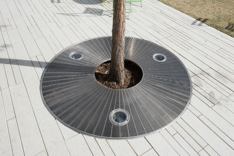 HSC Dallas Tree Grate Closeup.jpg