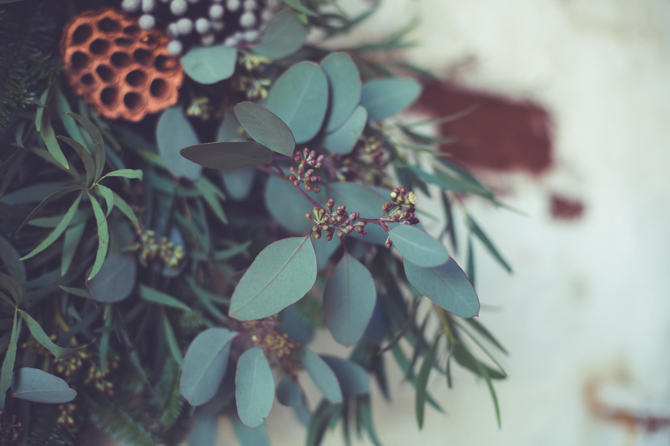 Wreath foraging-3-2.jpg
