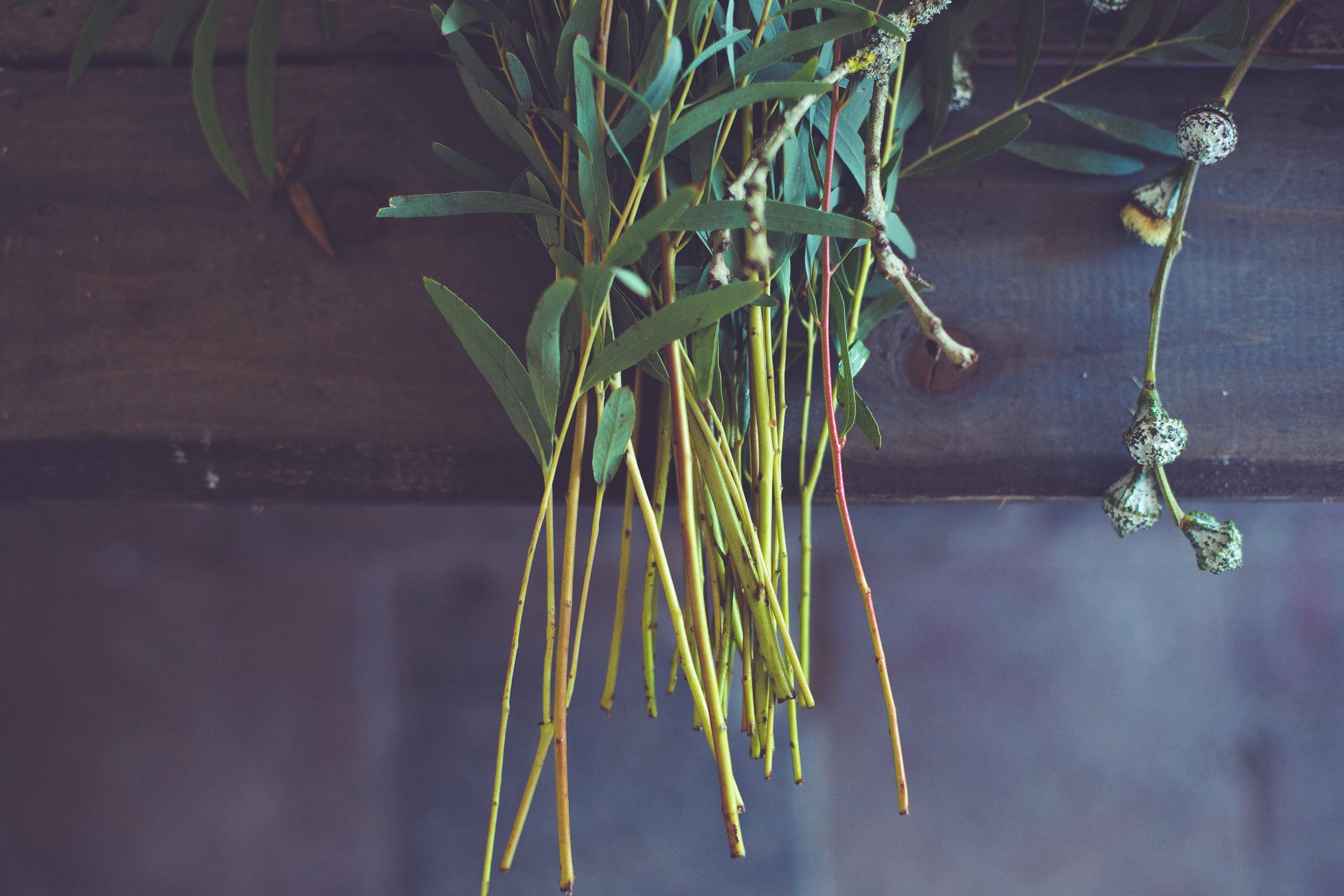 Wreath foraging-7-2.jpg
