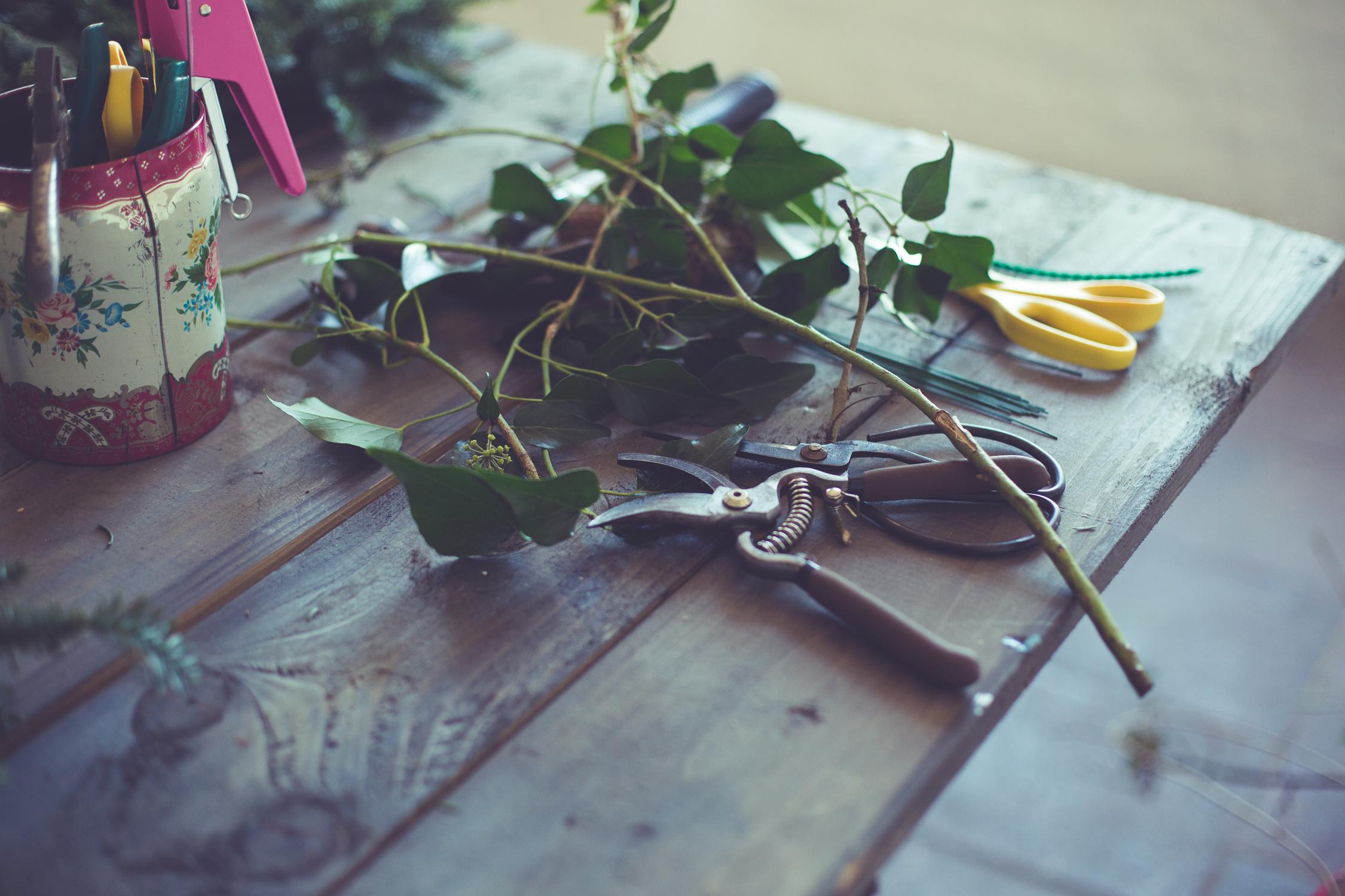 Wreath foraging-8-2.jpg