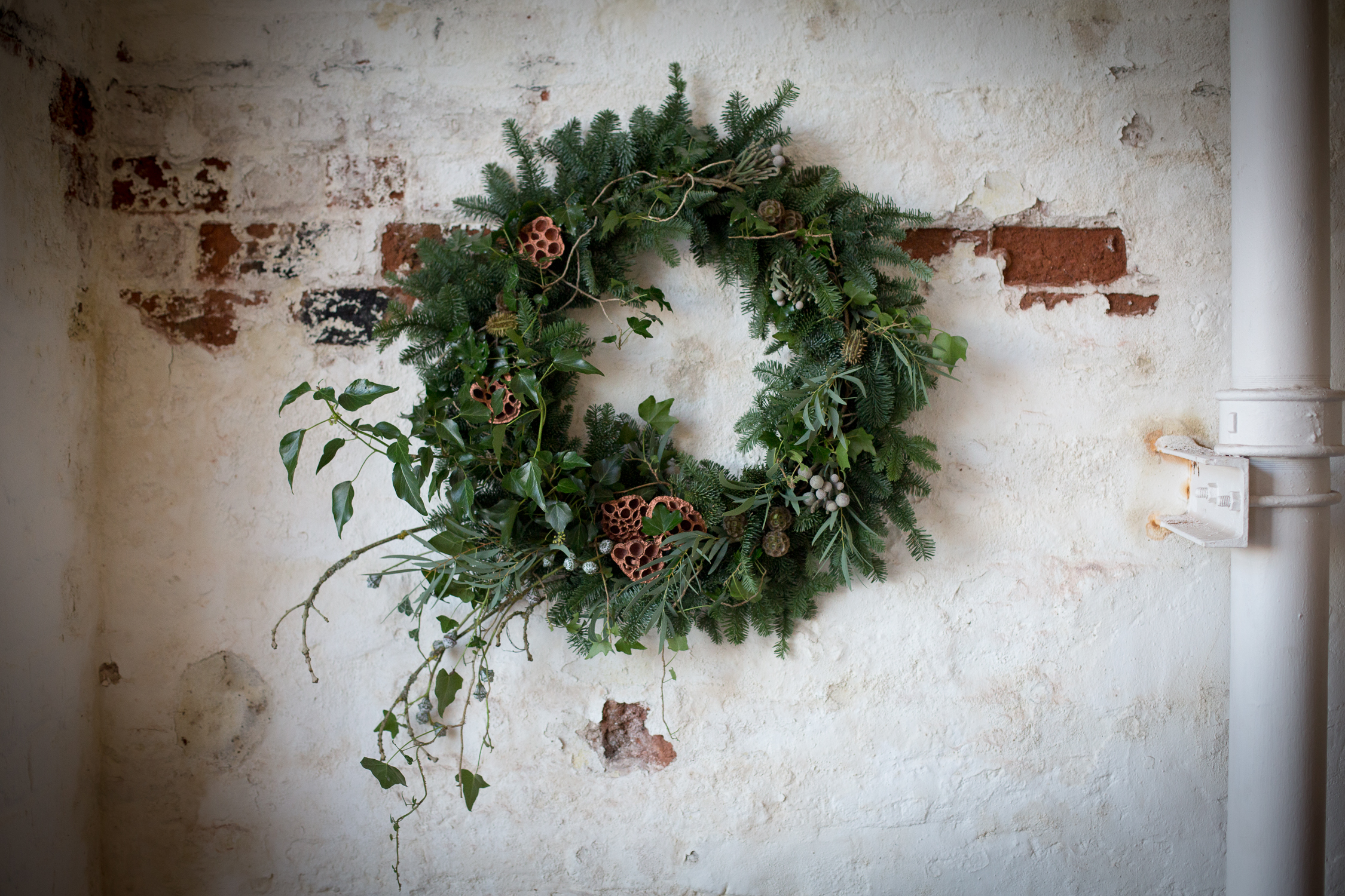 Wreath foraging-17.jpg