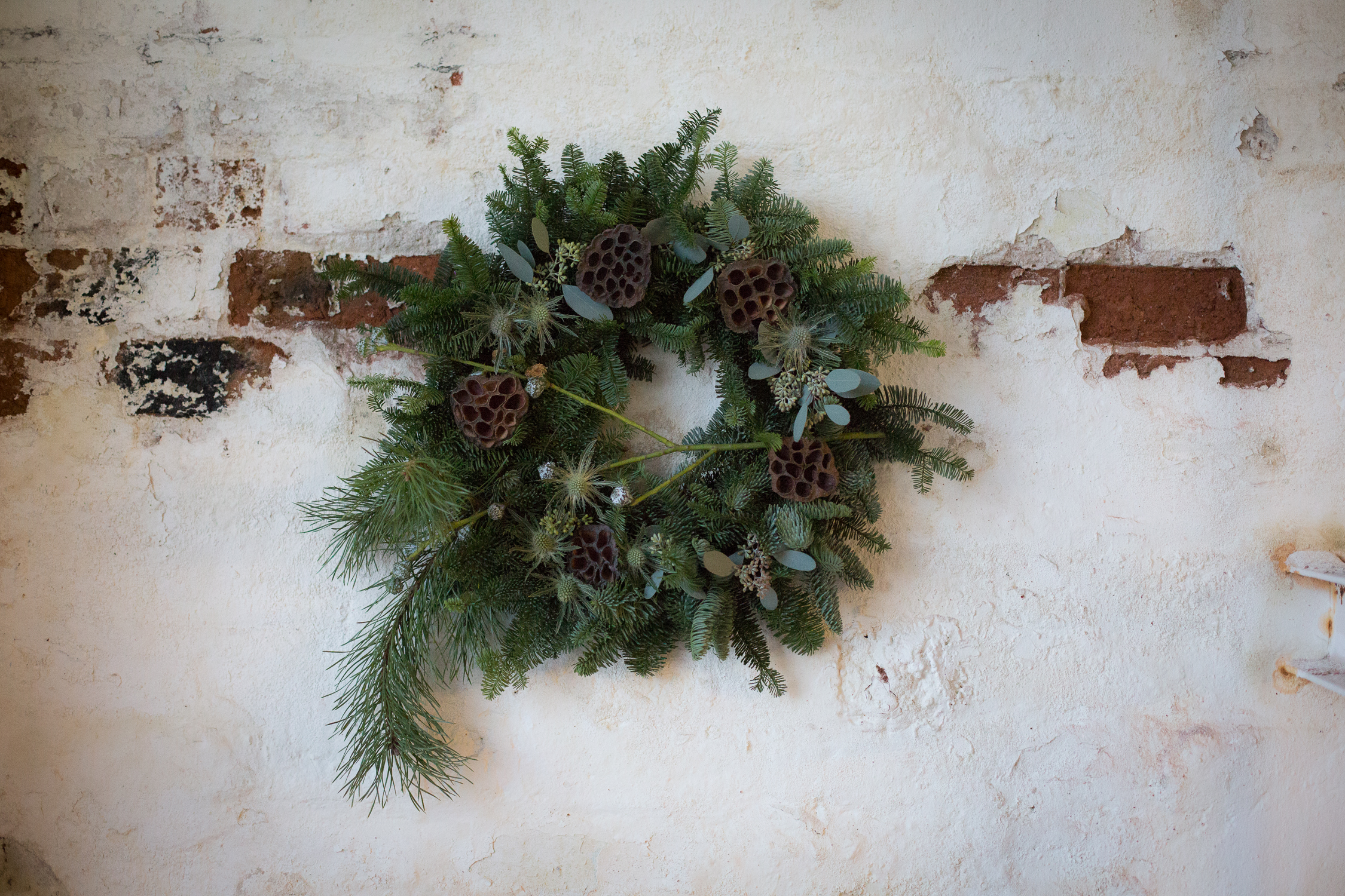 Wreath foraging-21.jpg