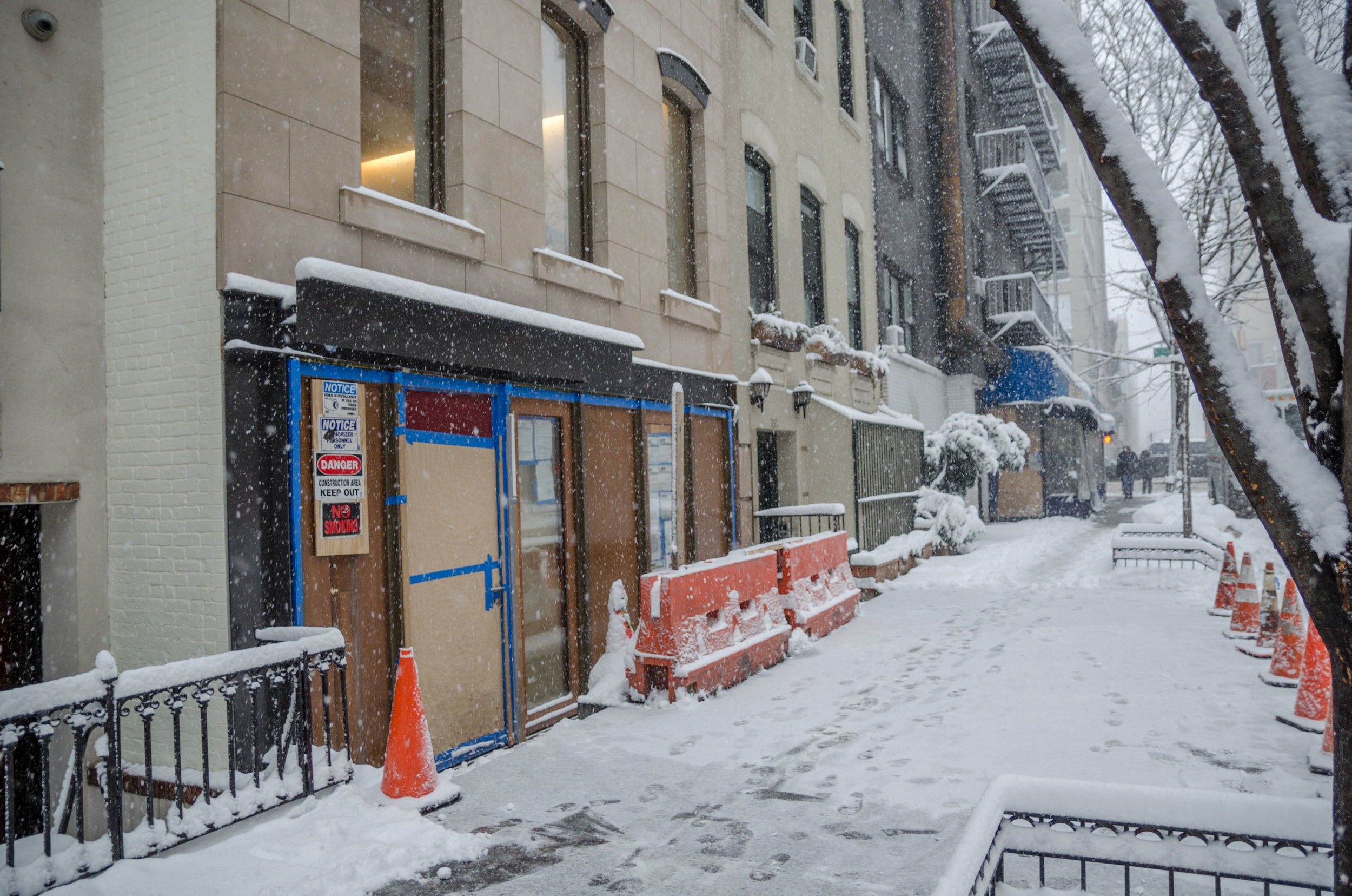 2017-02-09 - Snow Storm-14.jpg