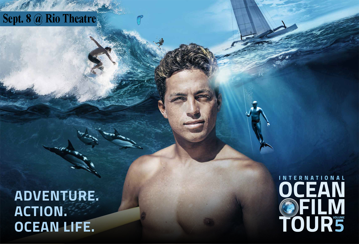 Ocean Tour image.jpg