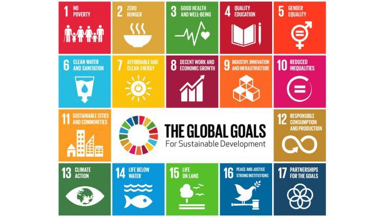 SPC SDGs-GlobalGoalsForSustainableDevelopment-05 72 dpi.jpg
