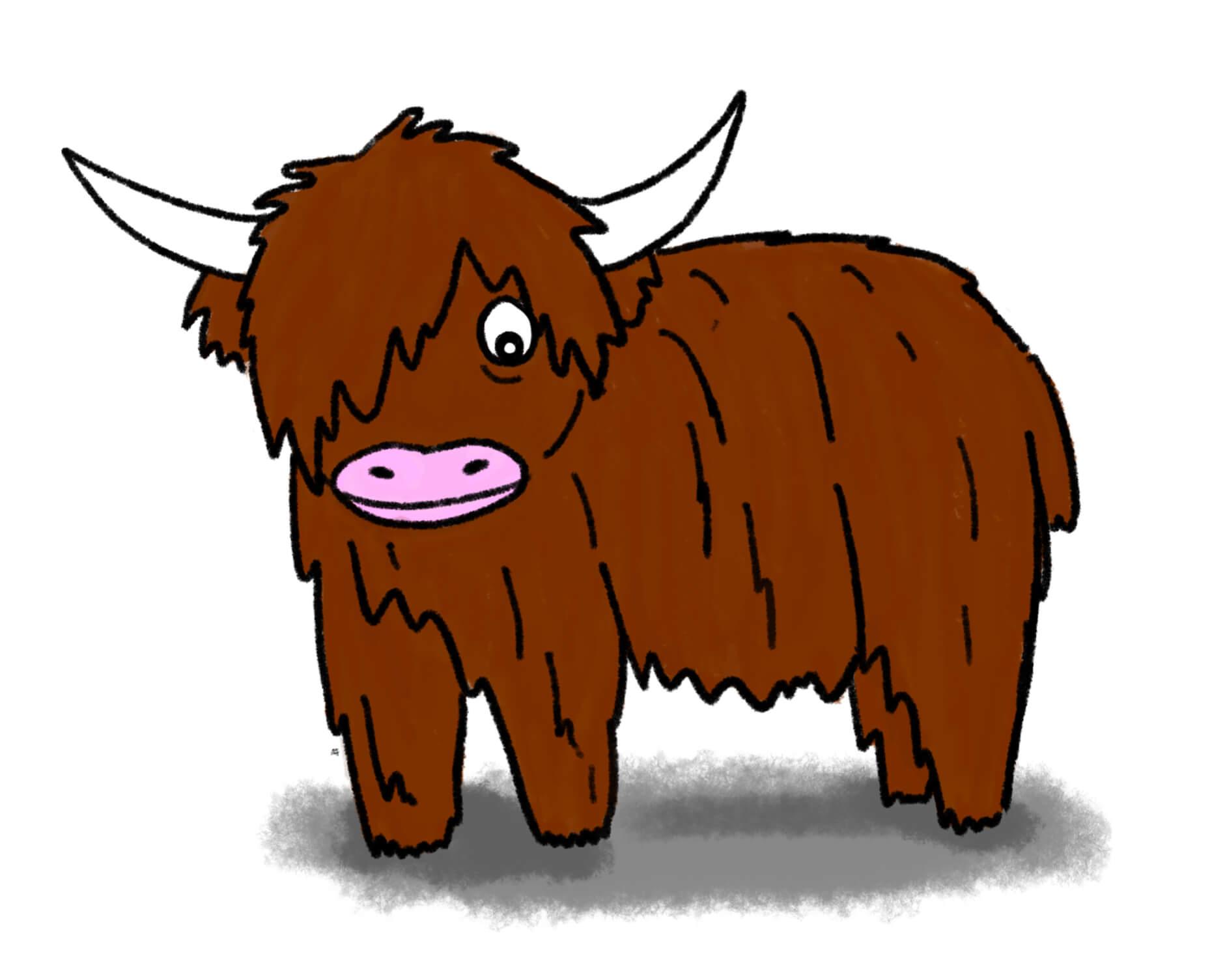 kayleigh mccallum illustration highland cow.jpeg