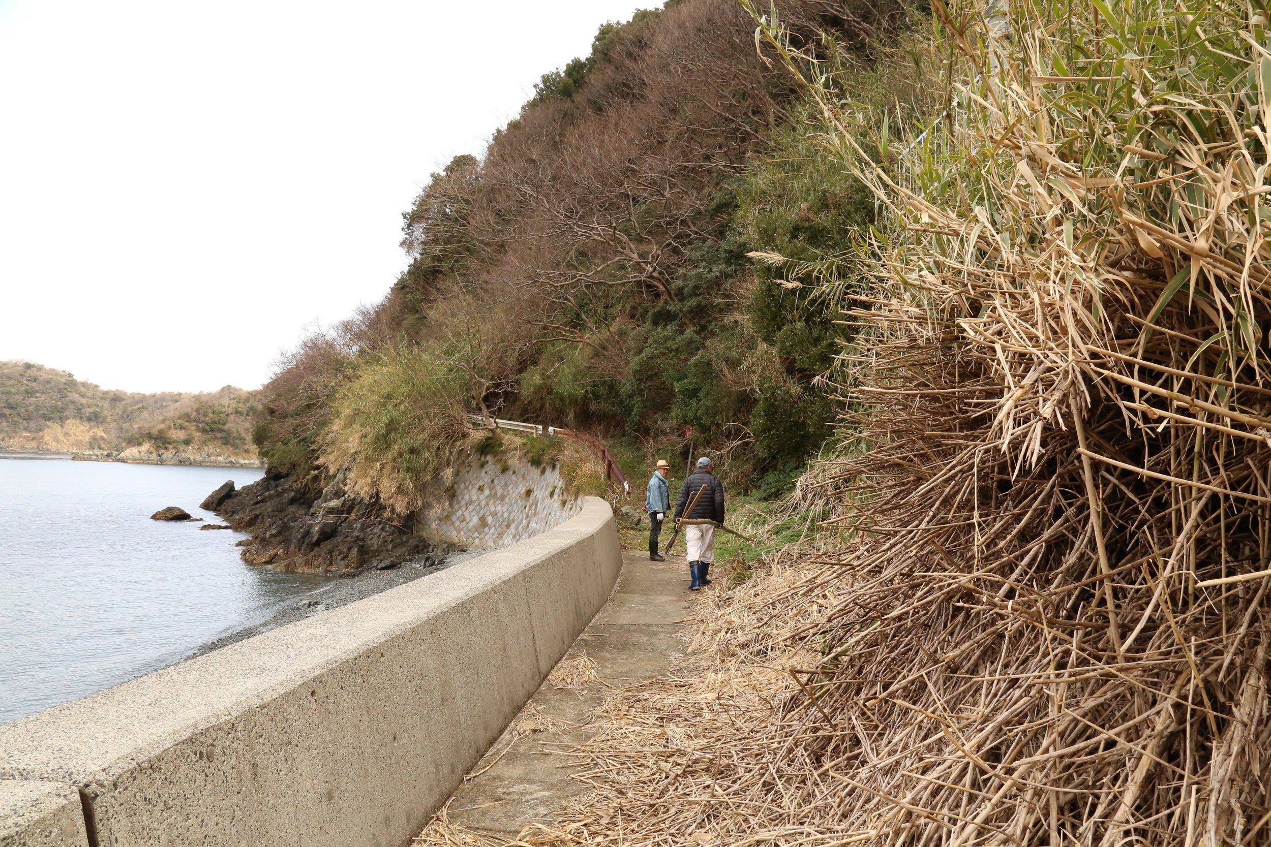 Satoyama-project-Yamagushi-ken-Japan
