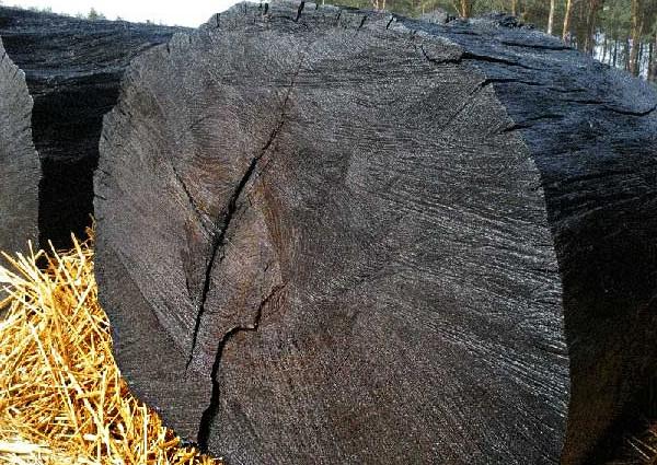 Ancient-wood-bog-oak-supplier