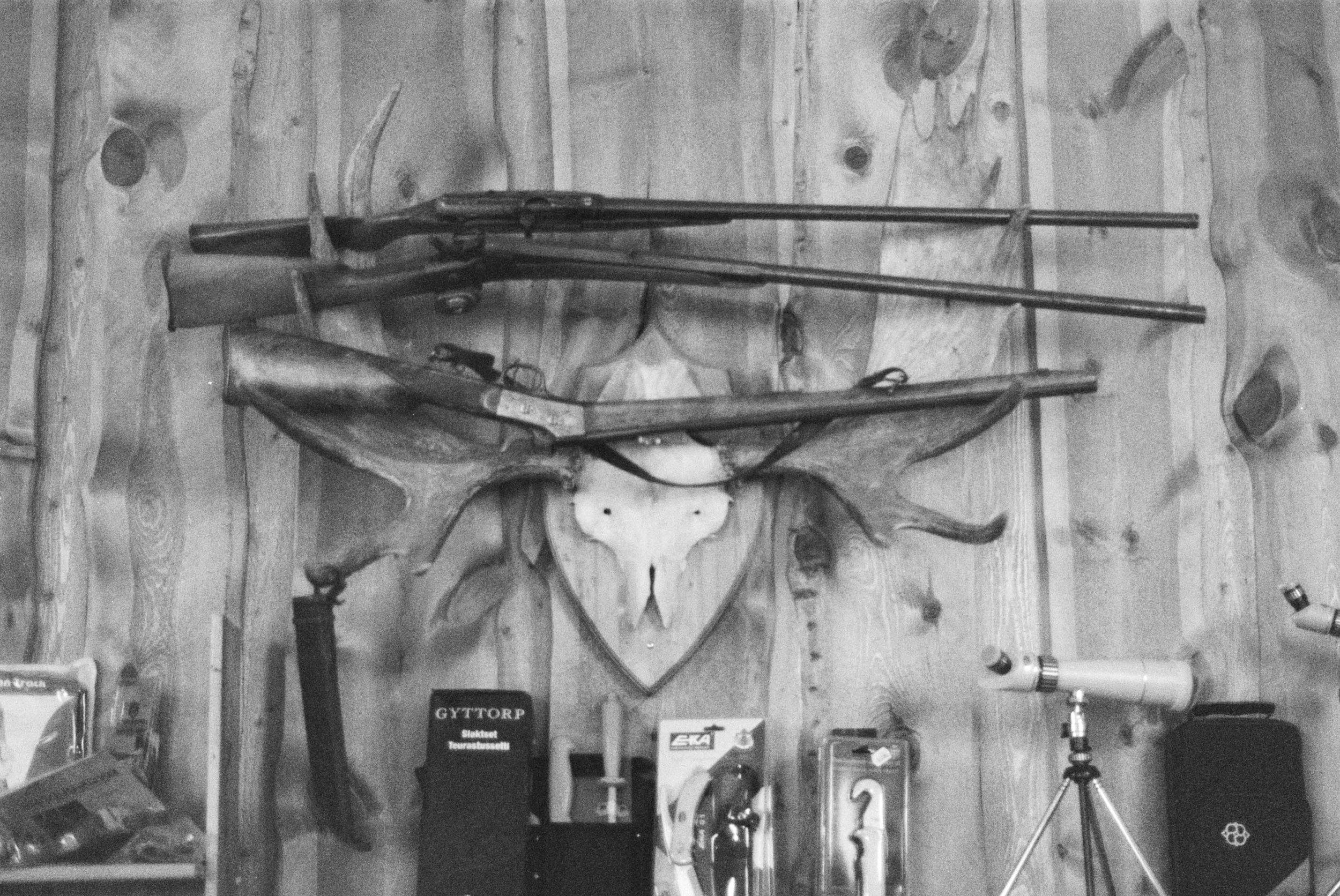 guns .jpg