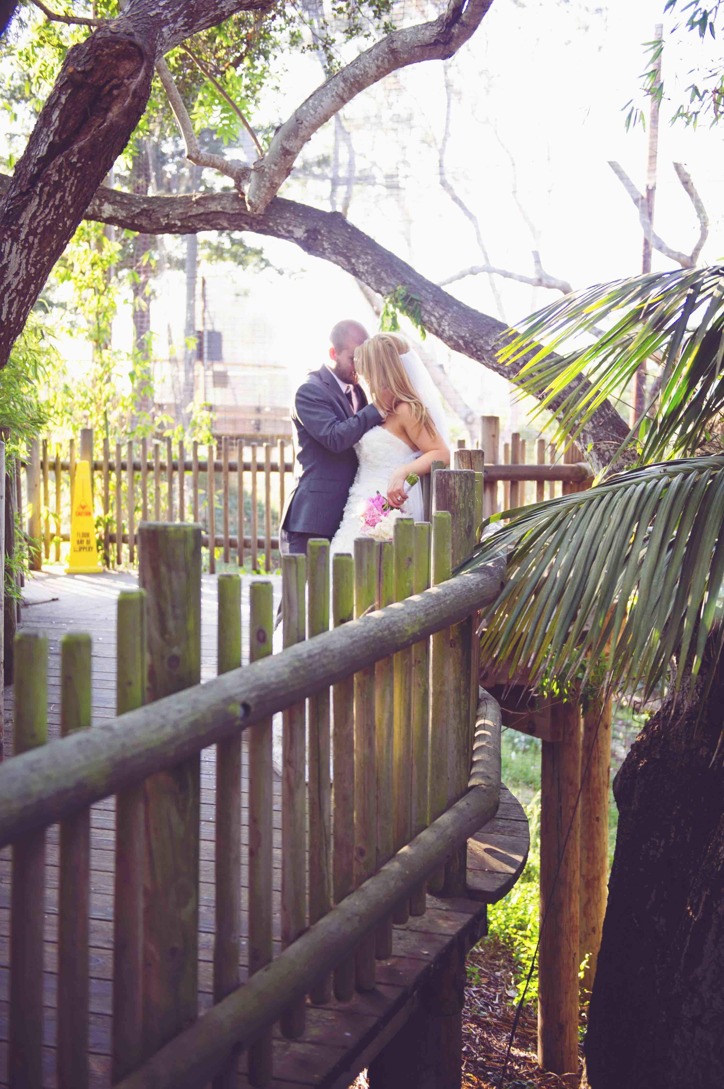 UC_santa_Barbara_Zoo_Wedding1847.jpg