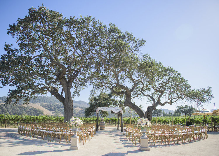 Vineyard Chairs and custom wooden ceremony arch  - Sunstone Vineyard
